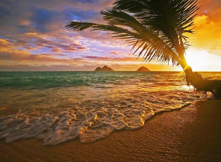 Lanikai Sunrise, Oahu, Hawaii