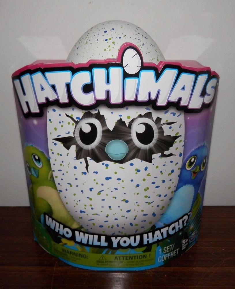 Hatchimals Review Check Out Before You Buy Top Toys Pinterest