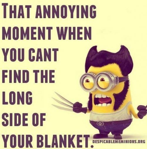 40 Funny Minions Quotes and sayings #Minion #Quotes and Sayings…