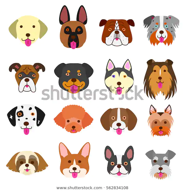 Cute Dogs Faces Set Stock Vector Royalty Free 562834108 Cute Dog Drawing Cute Animals With Funny Captions Dog Face