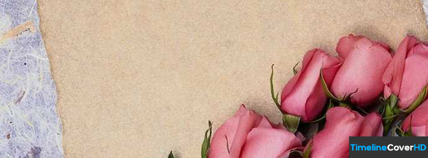 Rose Flowers Timeline Fb Covers Facebook Cover