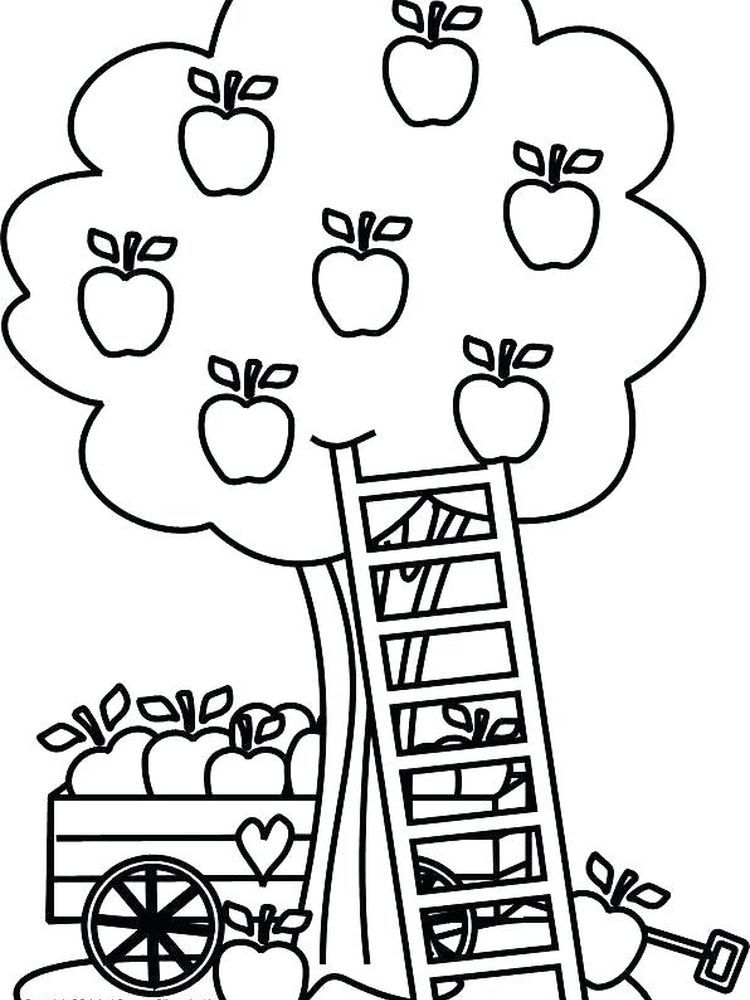 Apple Tree Coloring Pages Printable Apples Are One Of The Fruits That Many People Like Apart From Apple Coloring Pages Tree Coloring Page Fall Coloring Pages
