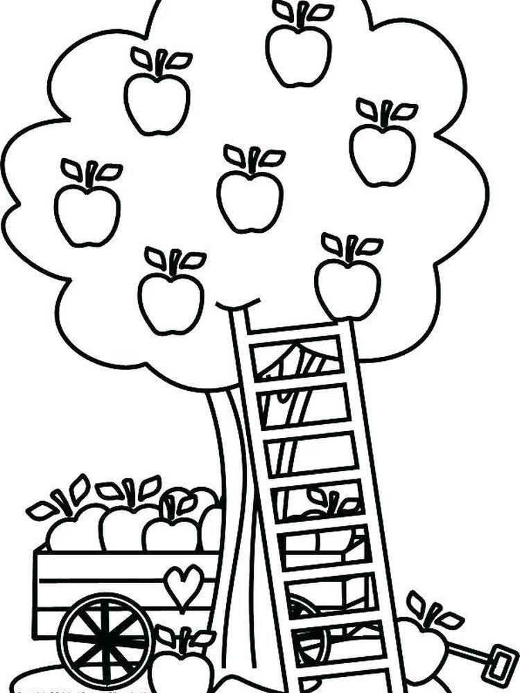 Apple Tree Coloring Pages Printable Dengan Gambar