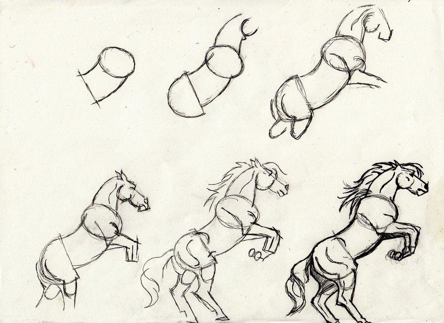 horse rearing tutorial by dalmajones on deviantart