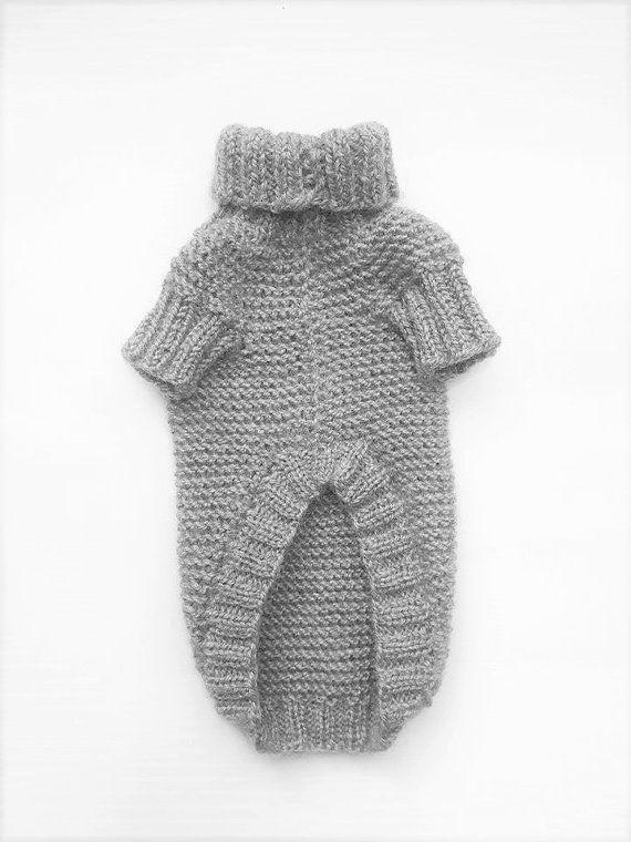 Suéter de punto perro para perro pequeño (chica o chico) de acrílico ...