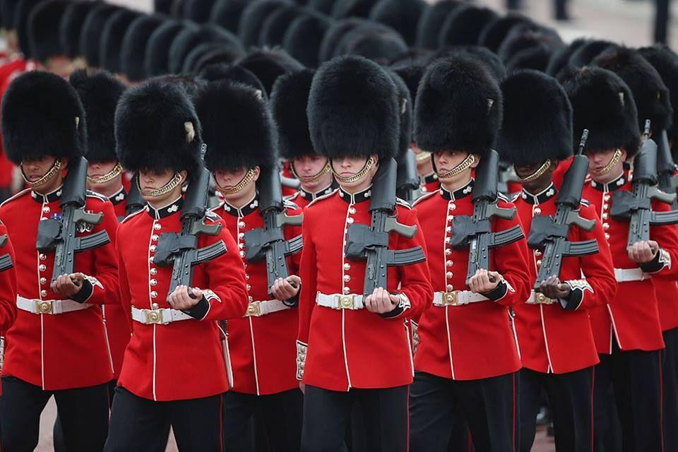 королевская охрана картинки оформлении интерьера