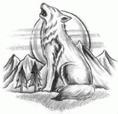 Resultado De Imagen Para Lobos Dibujos Dibujos