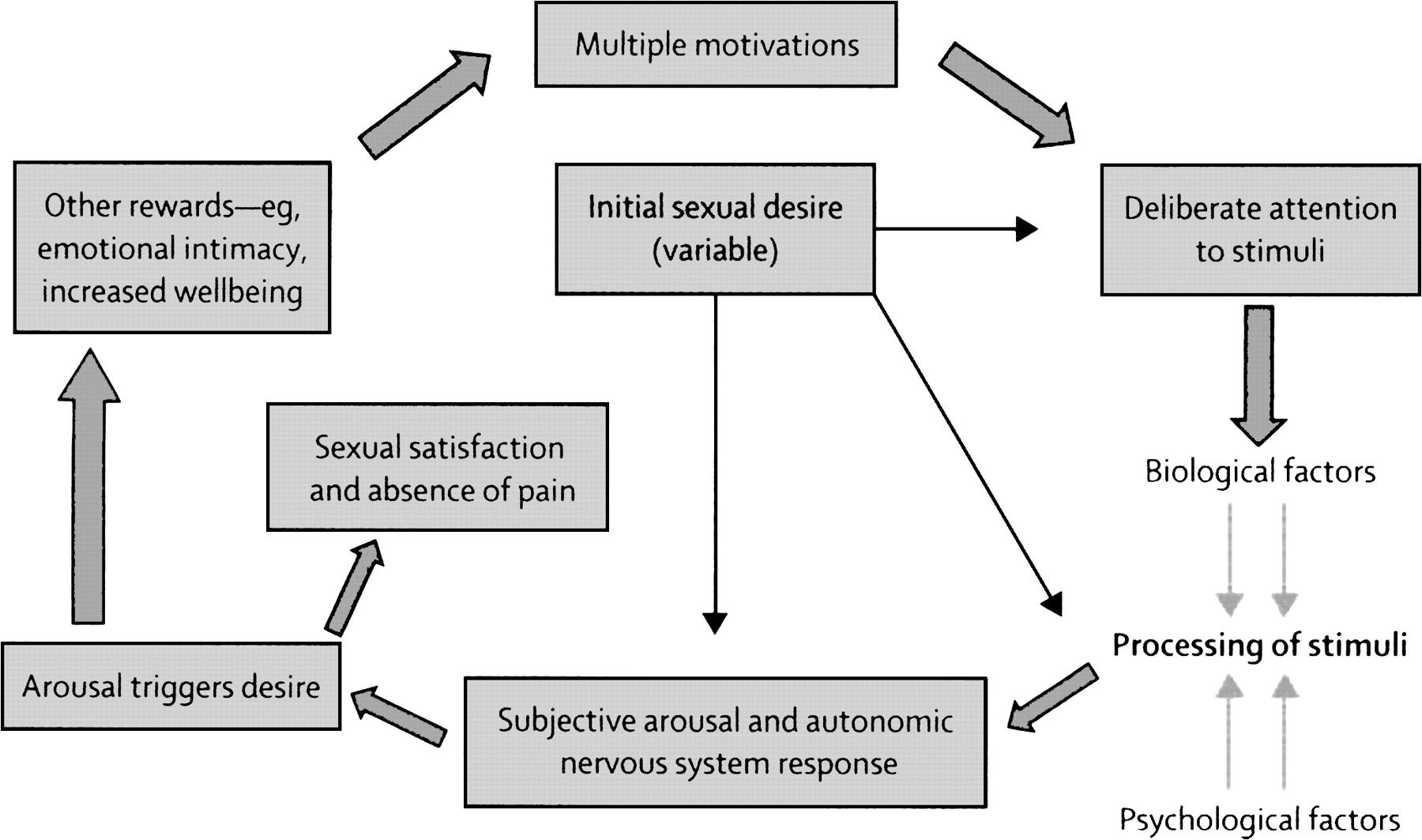 sexual response cycle and abnormalities The sexual response cycle alyssa dooms university of phoenix psy 210 charlette martin there are four phases of the sexual response cycle for females, males, and there are commonalities for both sexes the four phases are excitement phase, plateau phase, orgasmic phase, and resolution.