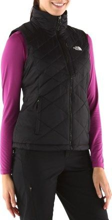 fecb1f98d79 The North Face Red Blaze Vest - Women  s
