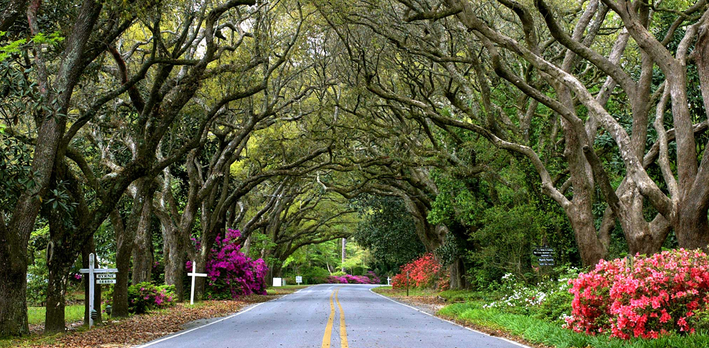 The Cutest Town in Every U.S. State Best places to live