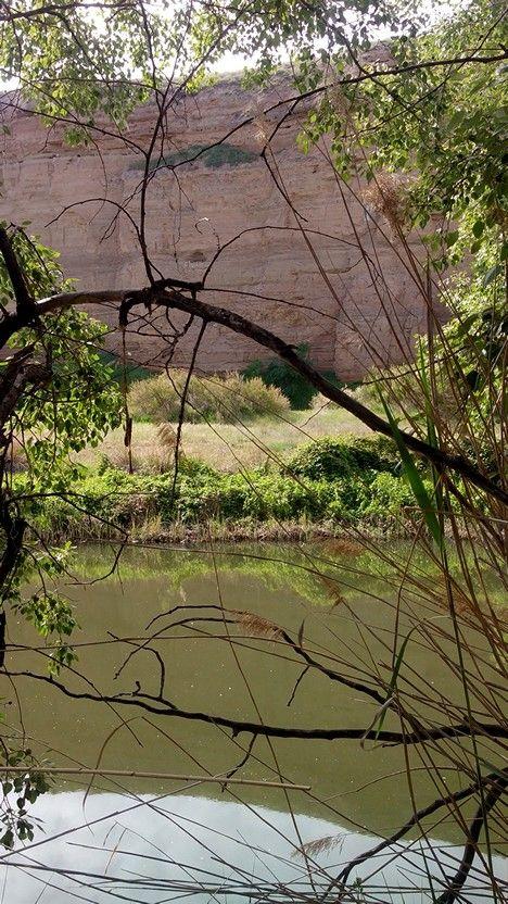 Río Henares, Alcalá de Henares, camino de los Santos de la Humosa
