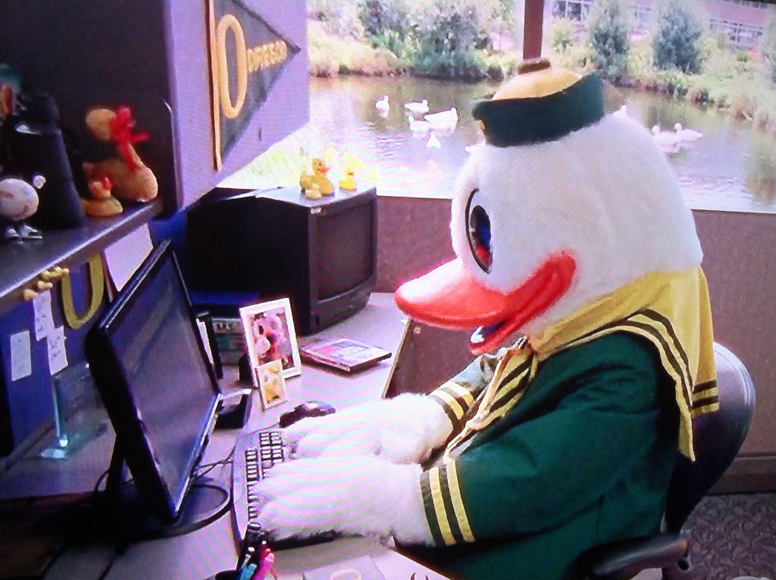 The Oregon Duck University Of Oregon Ducks Oregon Ducks Oregon Ducks Football University Of Oregon