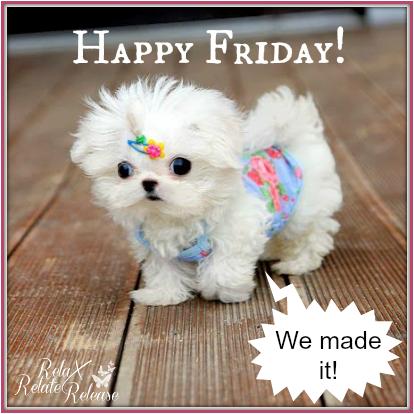 Awwww Sweetie 3 Friday Cute Dog Weekdays Its Friday