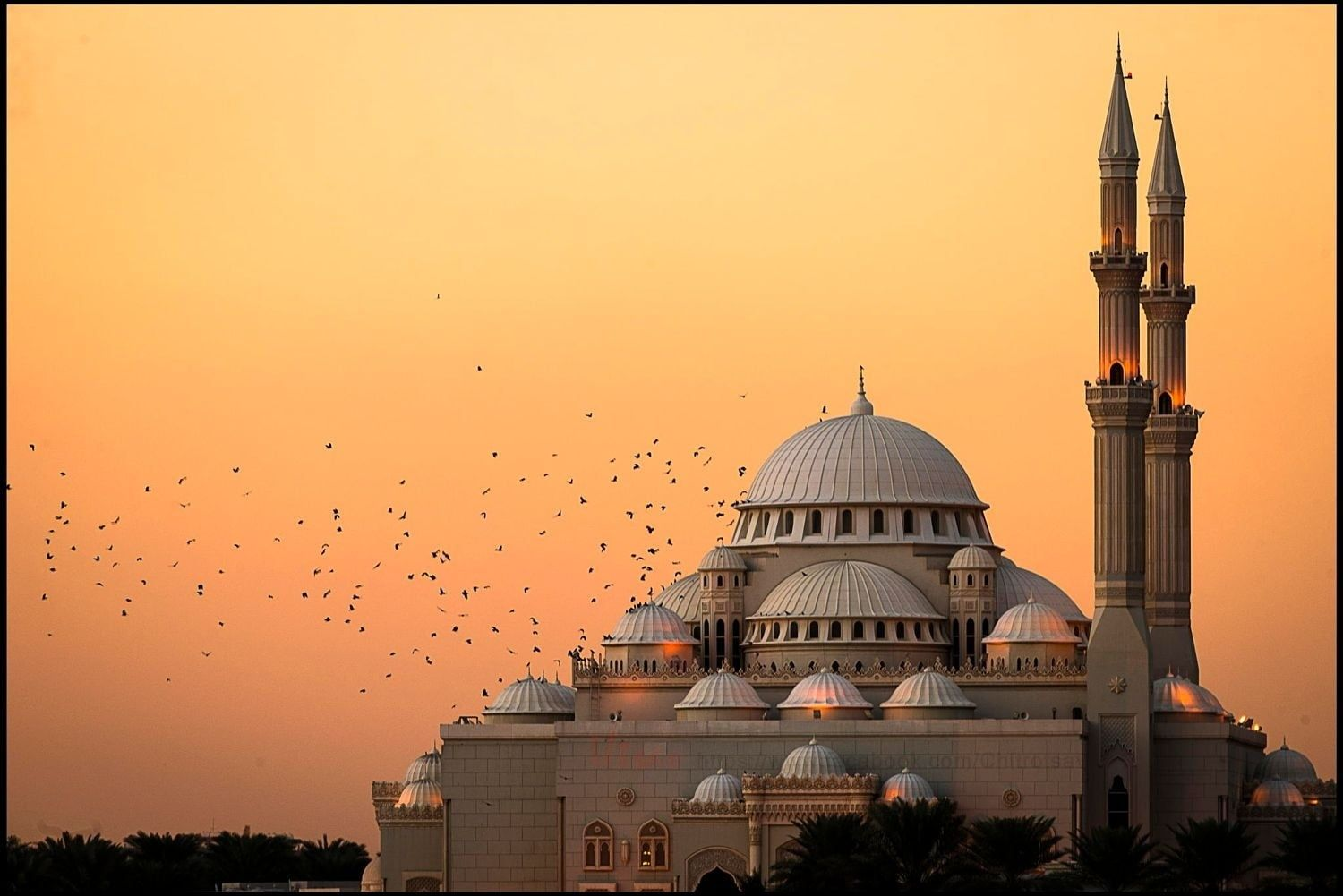 White And Brown Mosque Photography Nature Landscape Mosque Architecture Islam Flying Birds Suns Mosque Photography Architecture Wallpaper Architecture