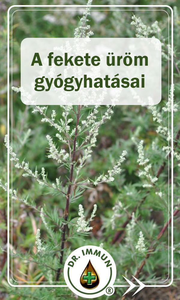 Gyuri bácsi tanácsa: gyógynövényt minden bajra