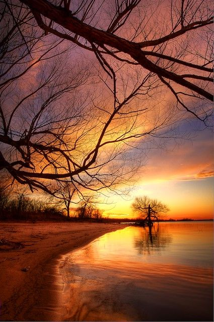 The River | South Canadian River Arm, Eufaula lake.... I cau… | Flickr