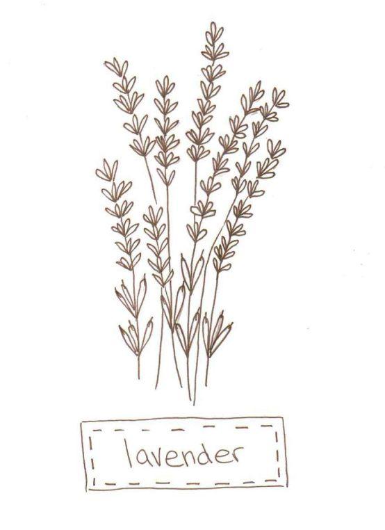 Little Lavender Stitchery Lavender Embroidery And Stitch