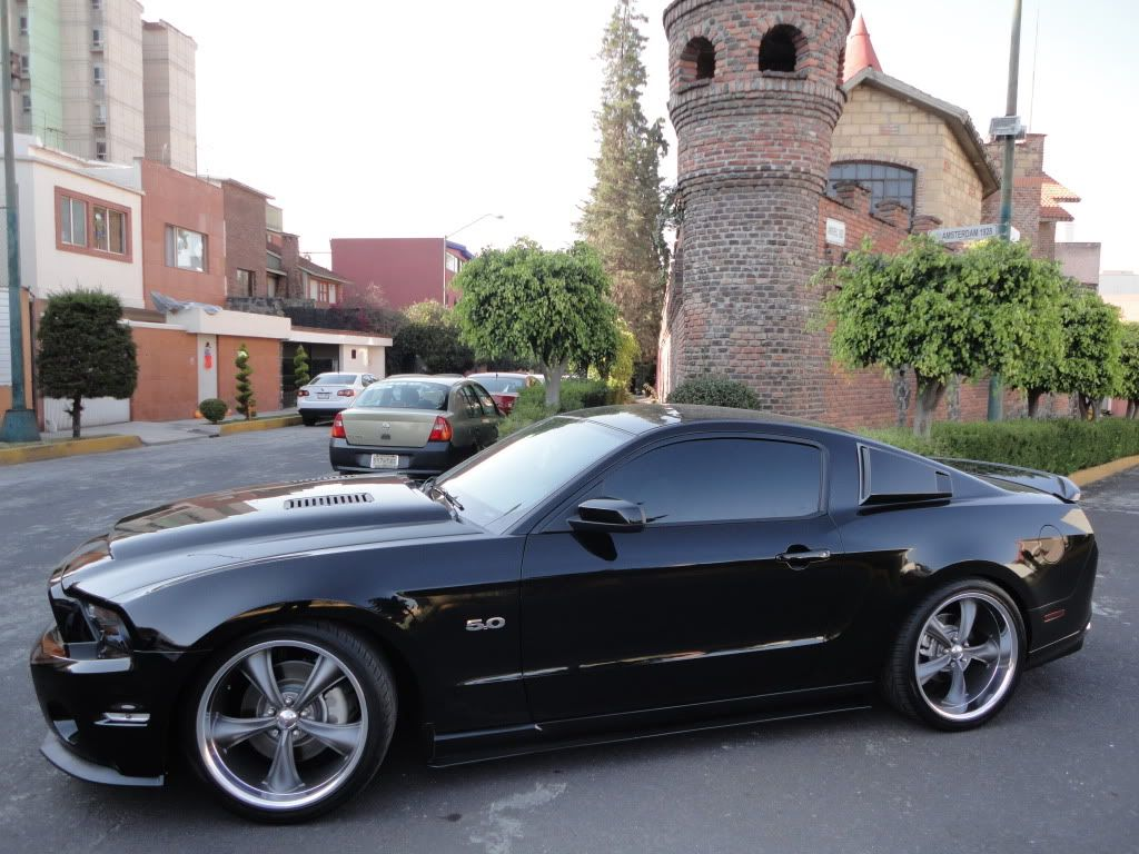 Ford mustang gt500 carbon fiber black mamba hood http www muchocars