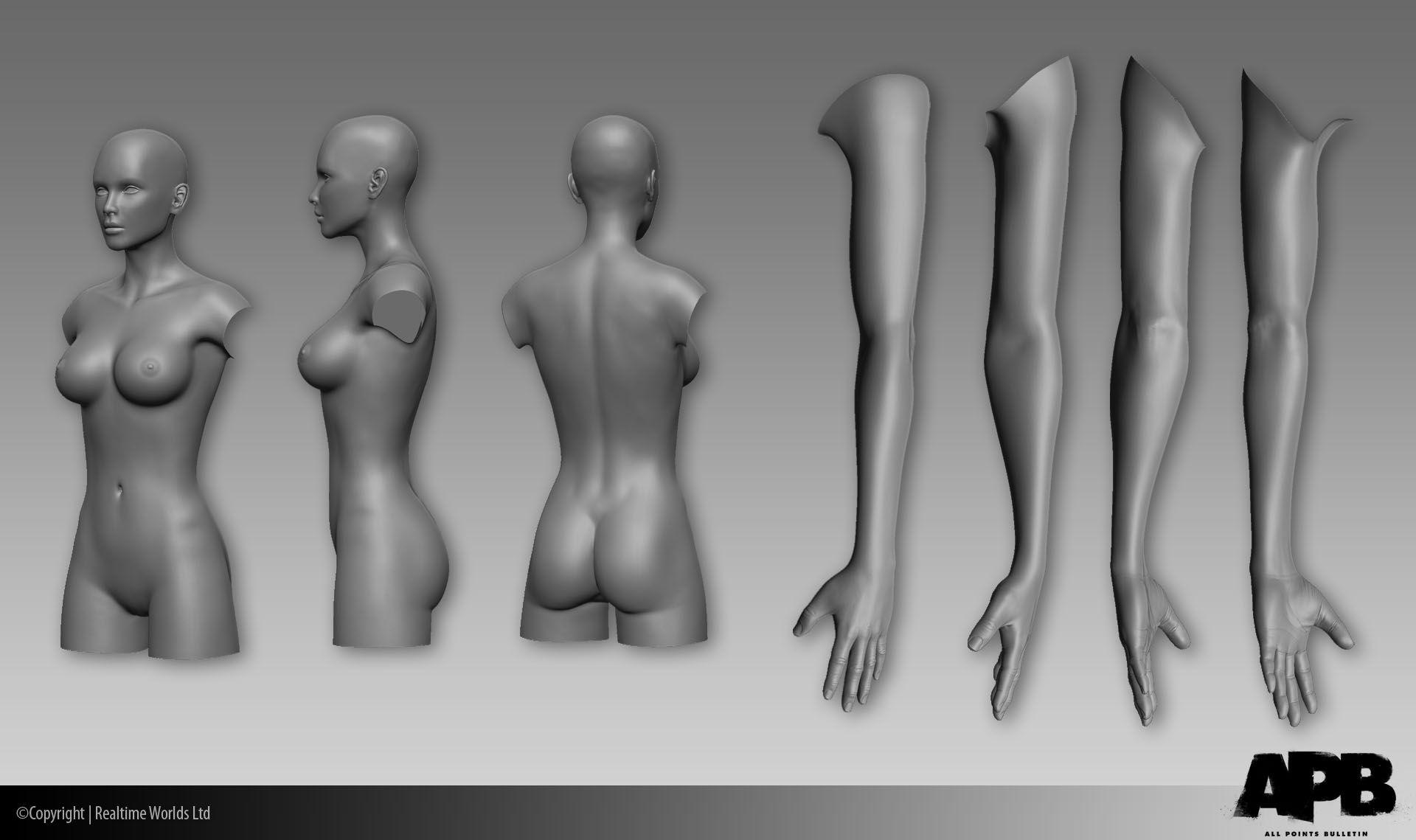 female arm anatomy - Google Search | Doodle | Pinterest | Anatomy ...