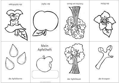 Material Intern Zaubereinmaleins Designblog Zaubereinmaleins Apfel Grundschule Herbst Im Kindergarten