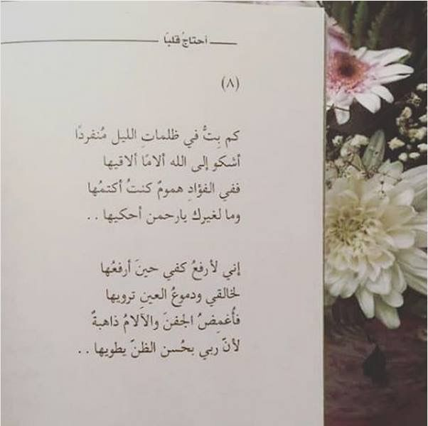 لأن ربي بحسن الظن يطويها Islamic Quotes Quran Quotations Poem Quotes