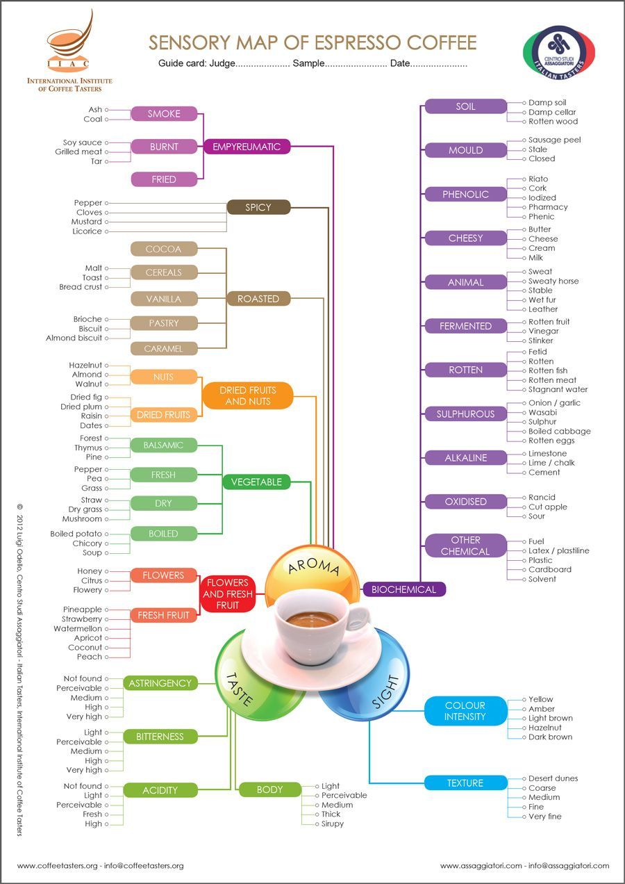 Sensory map of Espresso coffee Coffee roasting, Coffee