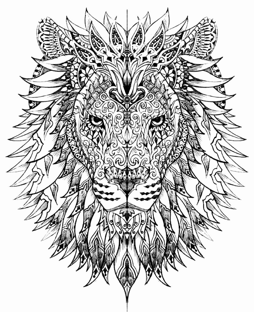 Hard Coloring Pages Of Animals in 2020 Lion coloring