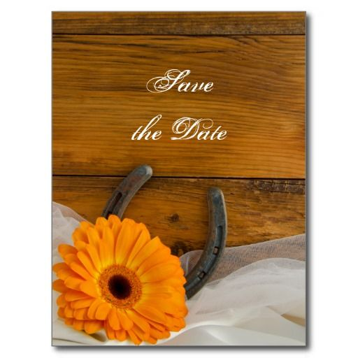 Daisy and Horseshoe Country Wedding Save the Date Post Card