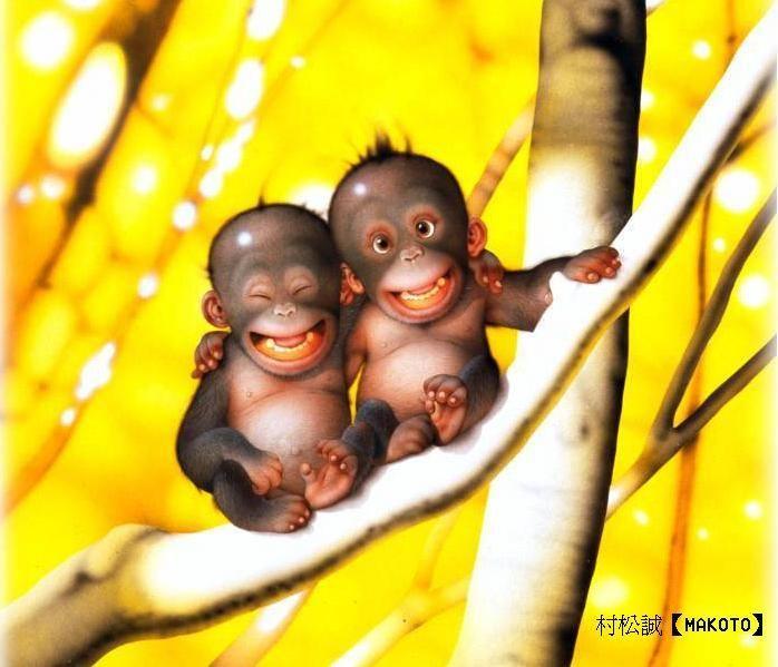 petits singes