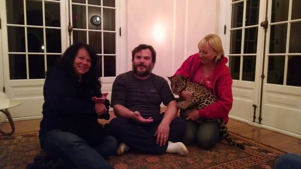 Jack black visiting with the haven cats nacho libre