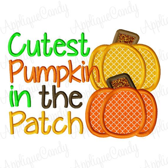Cutest Pumpkin in the Patch 2 Applique Embroidery by AppliqueCandy