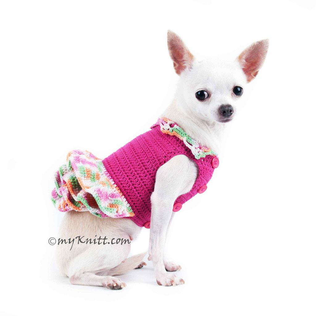 Df7211024x1024g 10241024 luv chis pinterest dog rainbow dog dress pink dog bridesmaid dress perfects wedding gift for pet ombrellifo Choice Image