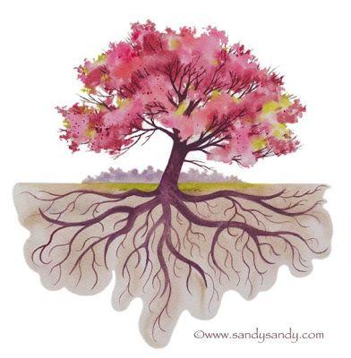 Daniel Radcliffe Roots Drawing Simple Tree Tattoo Tree Drawing