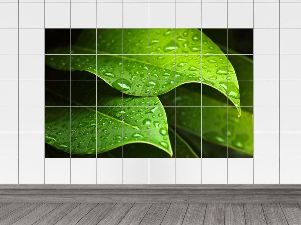 Fliesendekor Badezimmer ~ Fliesenaufkleber fliesenbild regen tau blätter bäume wasser