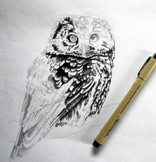 owl everything 23 Mystery Misc. (34 photos)