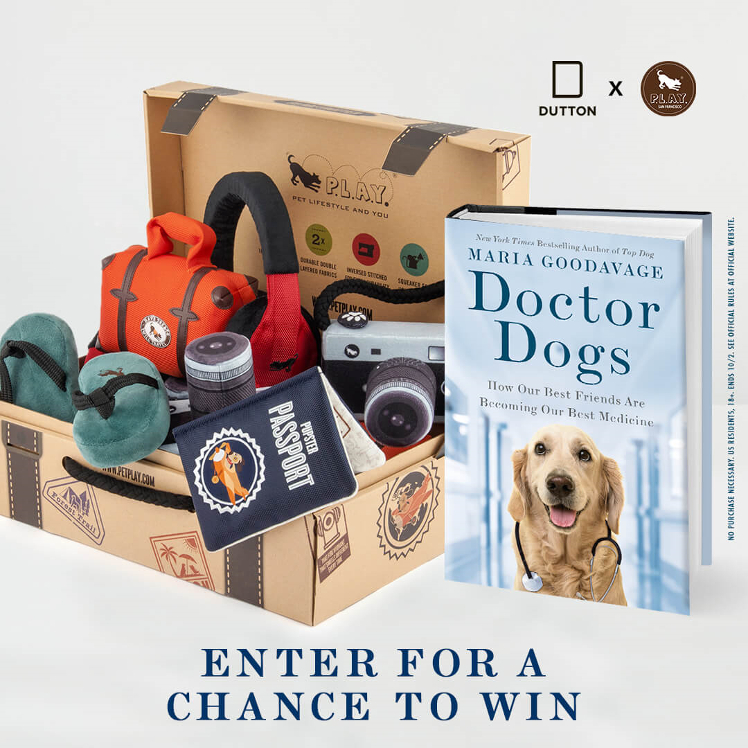 Doctor Dogs Play Best Dog Toys Dogs Dog Giveaways