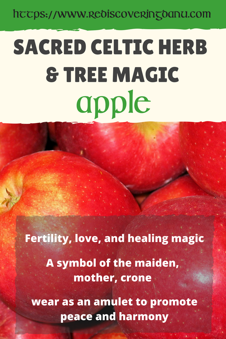 Apples were a symbol of fertility love and healing magic wear apples were a symbol of fertility love and healing magic wear as amulet biocorpaavc