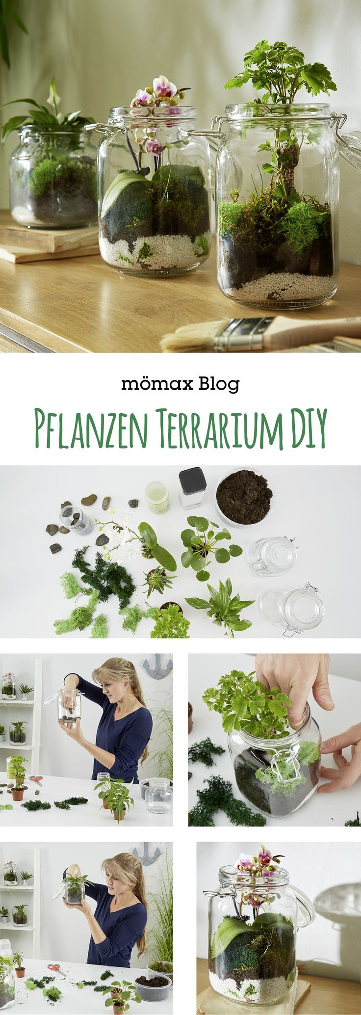 Pflanzen Terrarium selber machen #dekorationwohnung