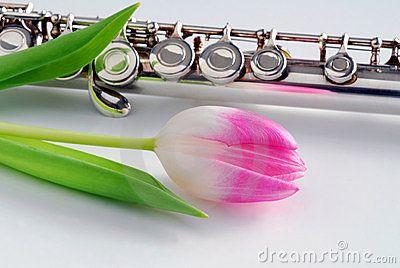 Tulip and Flute