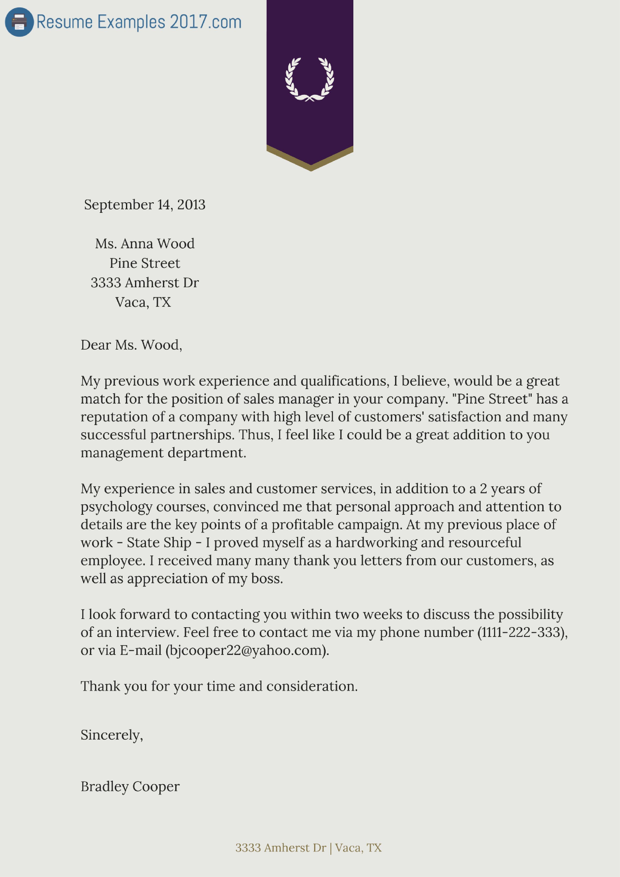 Sales Resume Examples 2017 Job Resume and Cover Letter