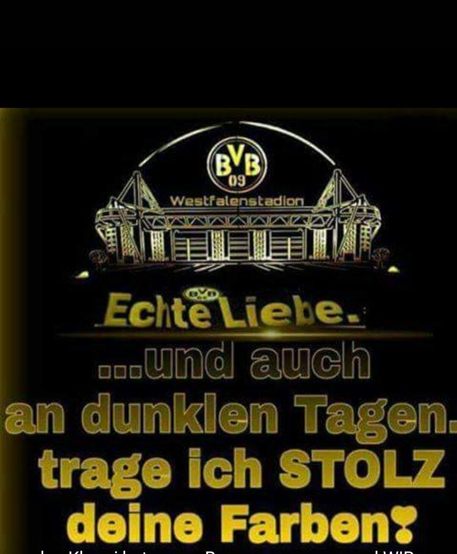 Pin von Sabrina Daniel auf BvB | Pinterest | Borussia, Dortmund und ...