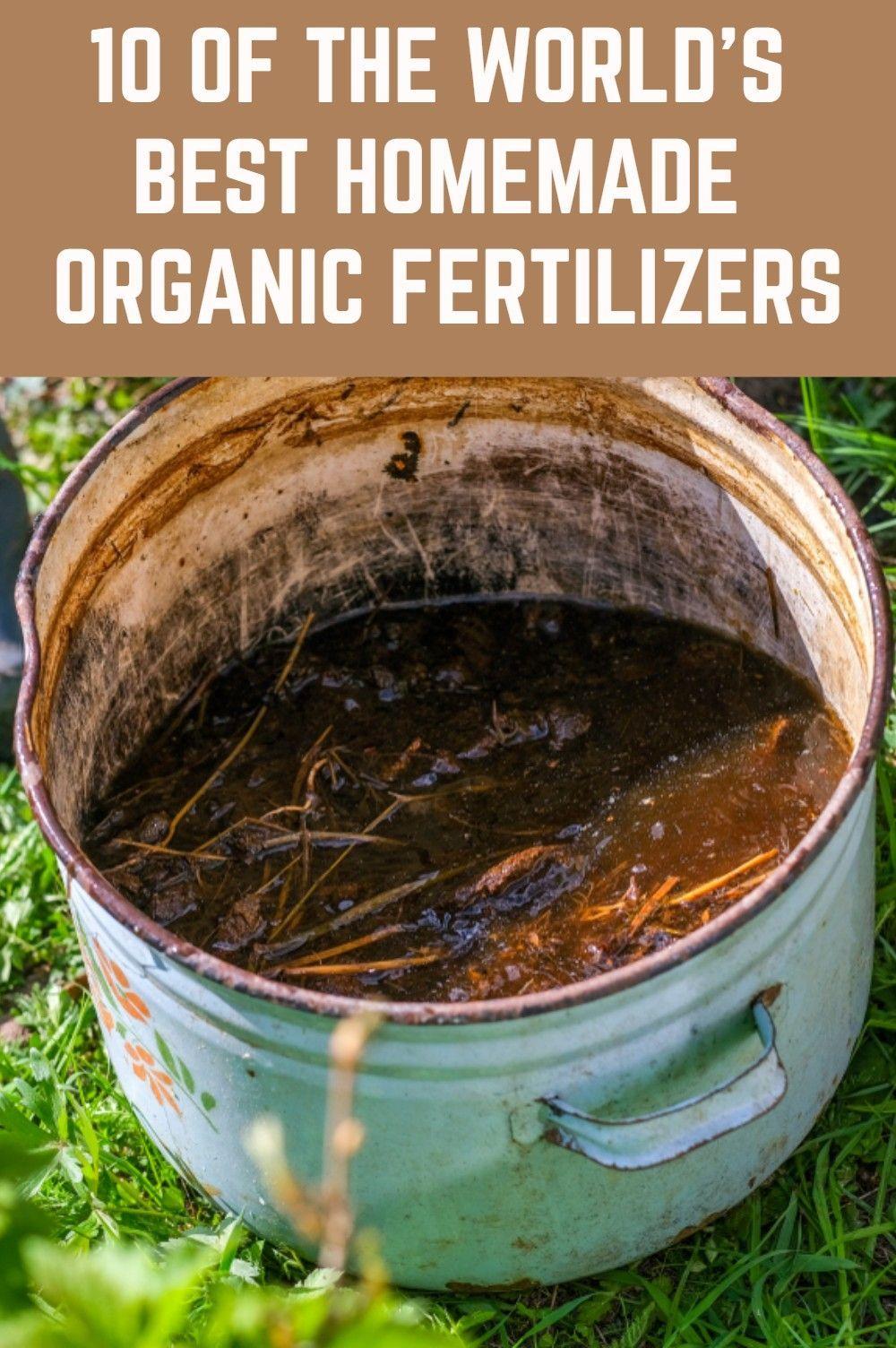 10 Of The World S Best Homemade Organic Fertilizers Homemade Plant Fertilizer Fertilizer For Plants Organic Fertilizer