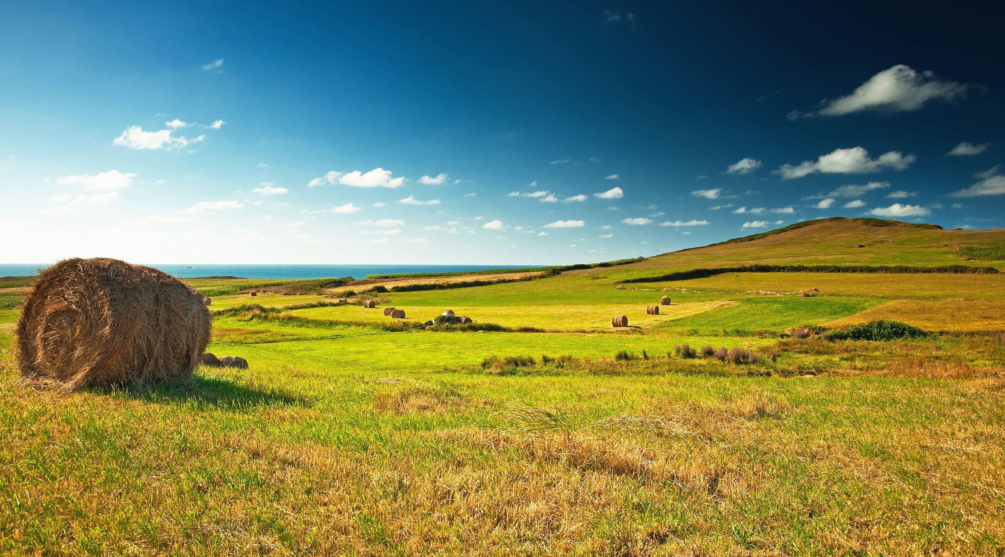 3840x2130 Meadows 4k Hd High Resolution Wallpaper Landscape Photography Landscape Digital Photography Backgrounds