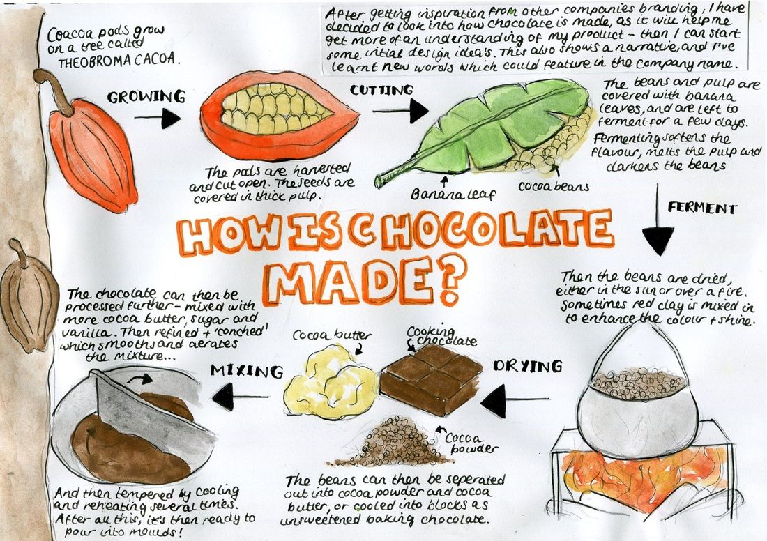 How Chocolate Is Made Worksheet How Chocolate Is Made How