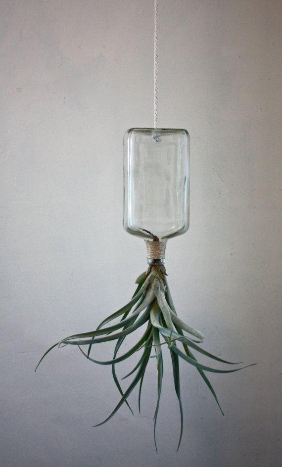 hanging up p dal verre bouteille planteur avec air plante. Black Bedroom Furniture Sets. Home Design Ideas