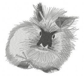 Fluffy bunny machine embroidery design. Machine embroidery design. www.embroideres.com