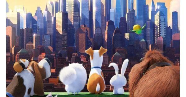 The Secret Life Of Pets Video Review Secret Life Of Pets Pets Movie Secret Life