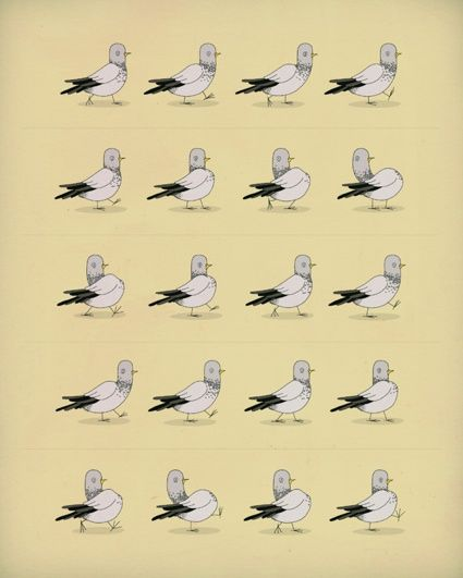 "Alex Eben Meyer ""Why do pigeons bob their heads when the walk?"""