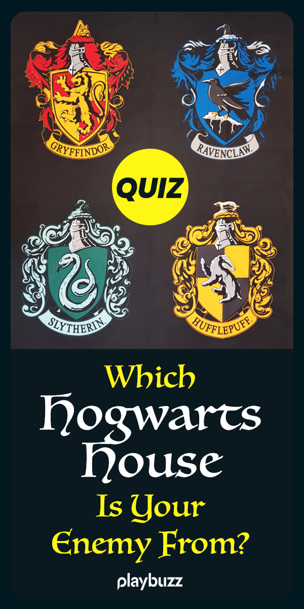 Which Hogwarts House Is Your Enemy From? Harry potter