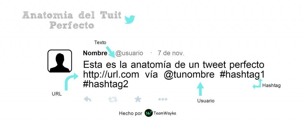 Anatomía del Tuit Perfecto | Pinterest | Anatomía, Perfecta y Twitter